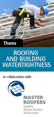 Roofing and building water tightness